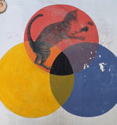 cat-and-coloured-circles-street-art