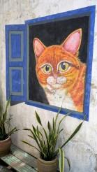 cat-at-window-street-art