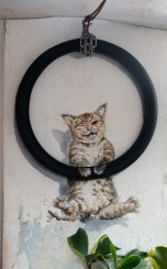 cat-on-tyre-street-art