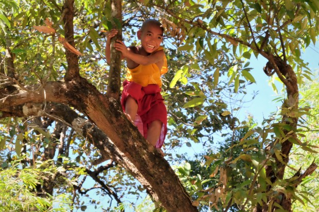 a-young-boy-climbing-a-tree-on-the-path-to-kyaikto