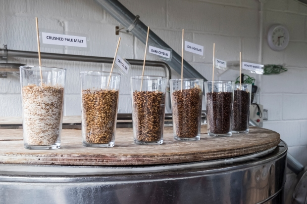 display of malt selection for brewing ale